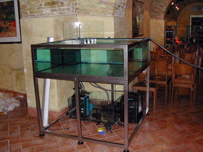 Vasche in vetrocamera per la ristorazione fantail for Vasche per allevamento ittico