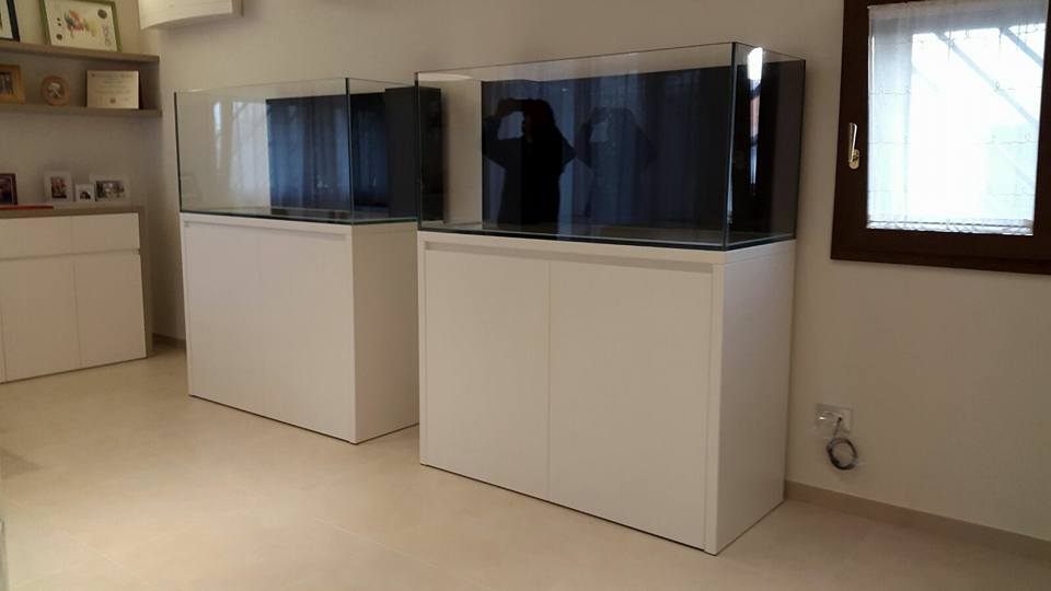 Acquari fantail fantail for Acquario casa prezzi