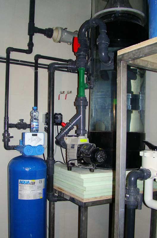 Acquario privato lt fantail for Filtro acquario usato